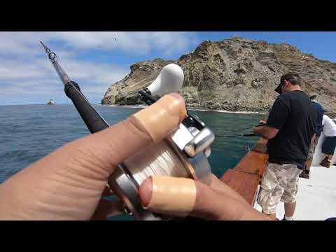 Native Sun Sportfishing Catalina Island DFW License Check