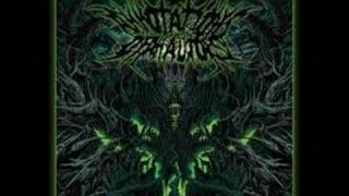 Annotations Of An Autopsy - Years Of Disgust