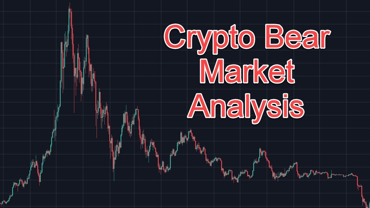 cryptocurrency bear market over