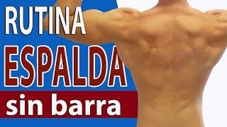 💣💥Cómo entrenar ESPALDA en casa SIN BARRA + Rutina