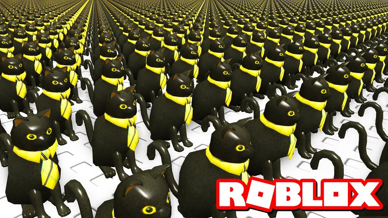 SIR MEOWS A LOT TAKES OVER ROBLOX! - YouTube