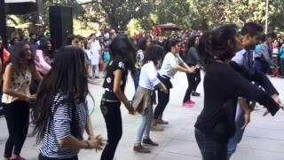 Flash Mob - StuC (Panjab University)
