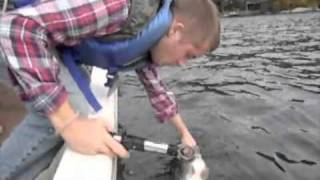 The Center For Animal Behavioral Research : Spoonplugging On Greenwood Lake, N.j. - Jeffrey Loy