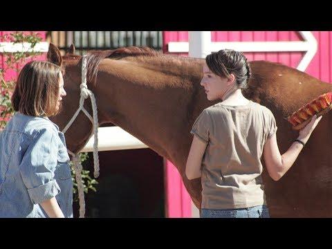 La Rebelle - Film Jeunesse Complet En Français