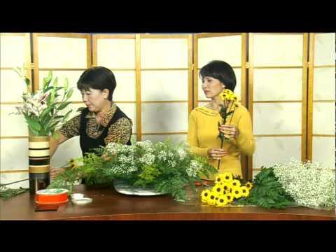 Cam Hoa - Hoi Thao