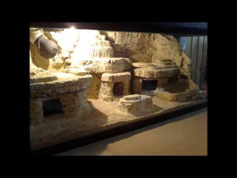 desert terrarium for my leopard gecko pustinjski terarijum za leopard gekona youtube. Black Bedroom Furniture Sets. Home Design Ideas