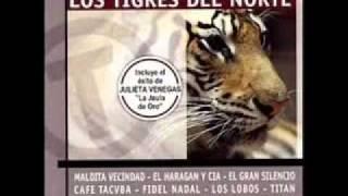 ely guerra la tumba falsa tributo a los tigres del norte hq