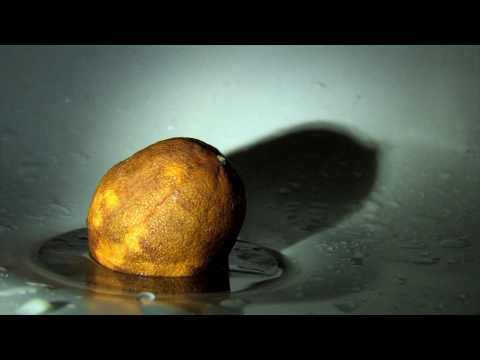 """""""Deadly Diseases of Fruit"""" Surreal Comedy Short Film"""