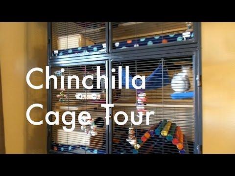 Chinchilla Cage Tour!