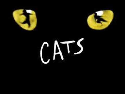 Best of Cats Musical