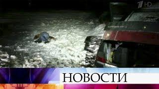 Двух боевиков запрещенной ИГИЛ ликвидировали в Ставропольском крае.
