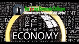 PETER SCHIFF Stating Global Financial Collapse Accelerating -Surviving Economic Crisis