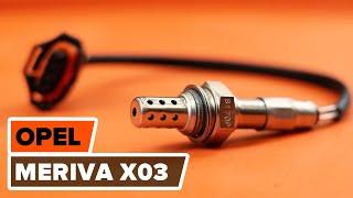 Wie Sie Bremshalter beim OPEL MERIVA selbstständig austauschen - Videoanleitung