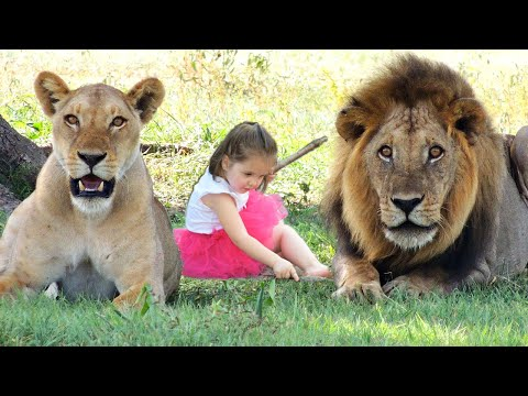AMAZING Animals That Saved Human Lives!
