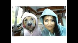 Instagram emei_fitness emei_pitbull Facebook emeisato.