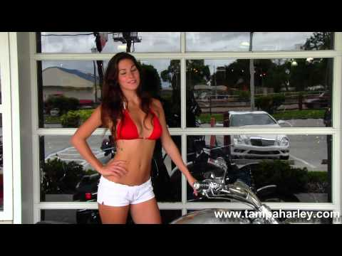 Used Harley Davidson Motorcycles For Sale In Mobile Alabama