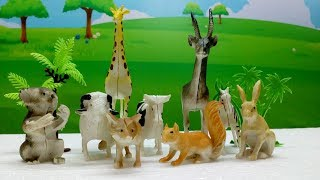 Zoo Wild Animals Toys Fun For Kids Children - Learn Animal Names and Sounds   Kids Toy Songs