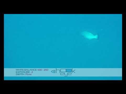 Testing Hook-Eye - 75 meters depth