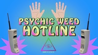 The Psychic Weed Hotline
