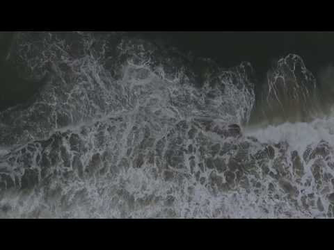 Tenet Waves Loop