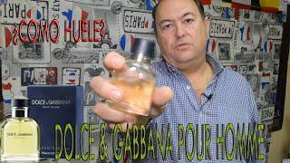 Dolce Gabbana Pour Homme Como Huele Youtube