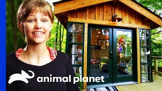 Grace VanderWaal Gets The Ultimate Chilled Out Clubhouse | Treehouse Masters