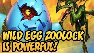 Hearthstone: Wild Egg Zoolock Is Powerful!