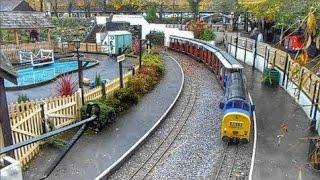 Trago Mills Miniature Railway, 16/11/2014