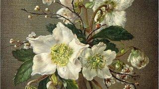 Натюрморт. Как рисовать цветы.  Гризайль, пропись коричневым.