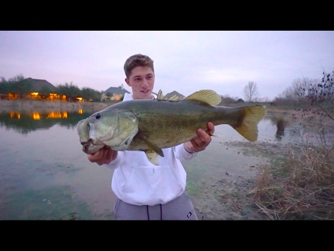 Catching big fish in hidden mud hole youtube for Catching big fish