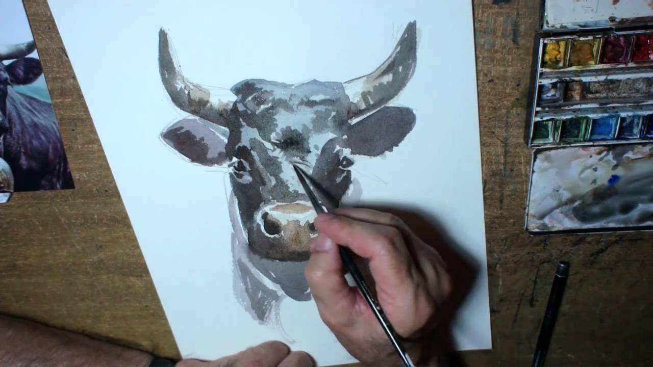 derib dessine une vache d'hérens en direct - youtube