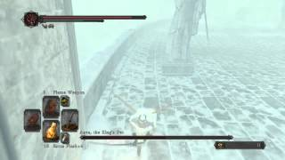 Dark Souls 2: SotFS, Killing invisible Aava The King