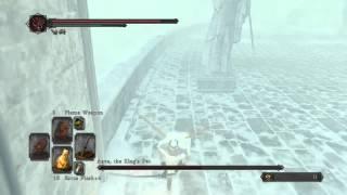 Dark Souls 2: SotFS, Killing invisible Aava The King