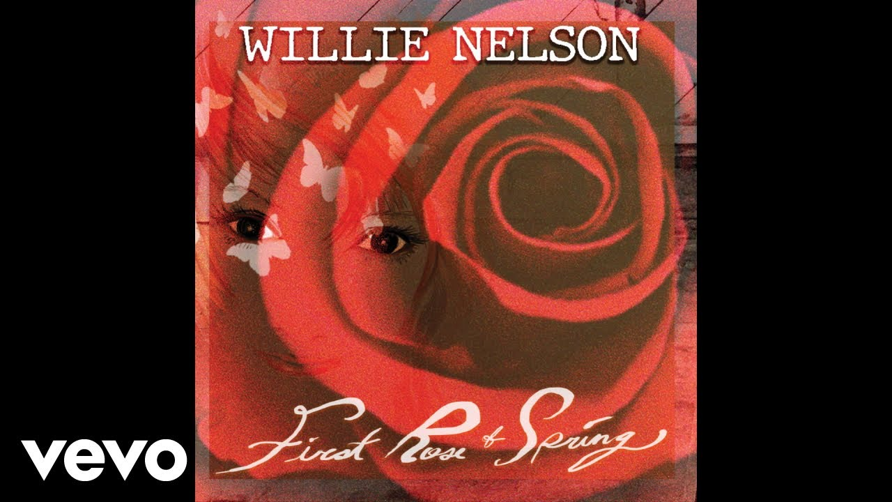 Willie Nelson - Our Song (Audio)