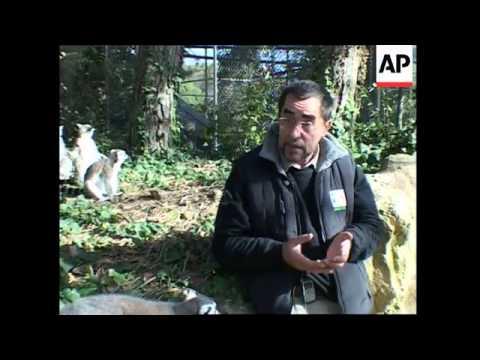 Lyon Zoo aims to re-create African savannah