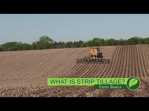 Farm Basics # 1073 What Is Strip Tillage? (Air Date 10-28-18)