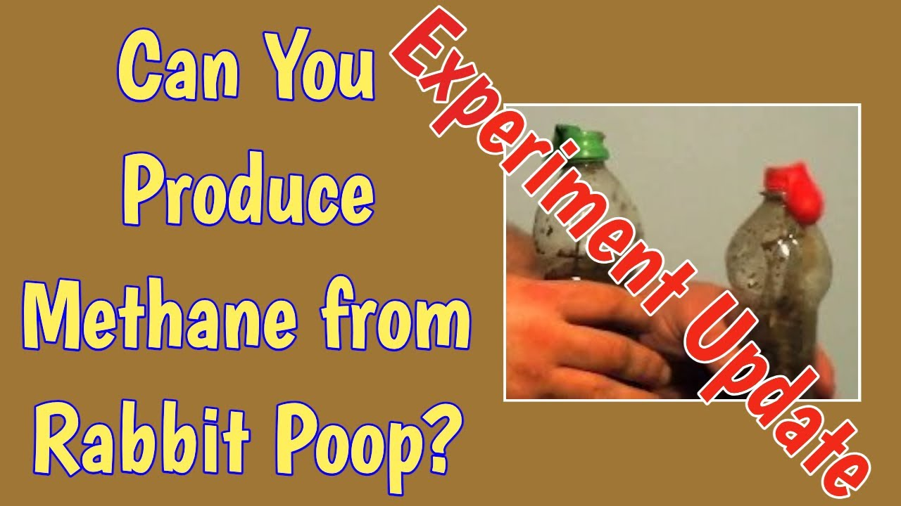 Can You Get Methane From Rabbit Droppings? Update to the Experiment