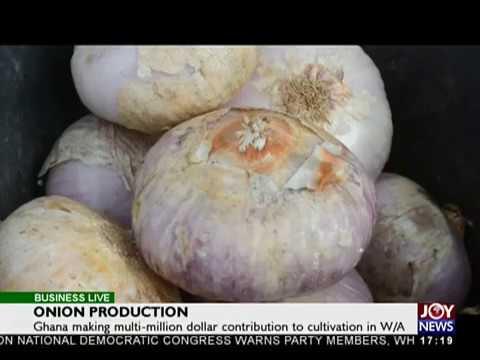 Onion Production - Business Live on JoyNews (22-12-17)