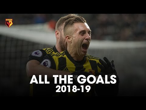 ALL THE GOALS ⚽ | PREMIER LEAGUE 2018-19
