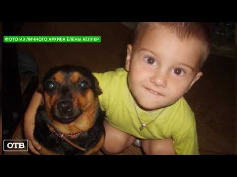 Жительница Арамиля пытается вернуть собаку, которую забрали зоозащитники