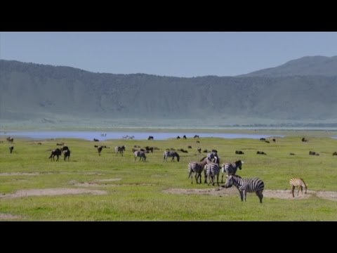 Anthony Bourdain in Tanzania: 'Even the toilet has a nice view' (Parts Unknown)
