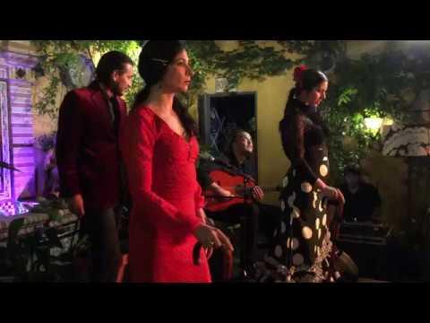 Espectaculo Flamenco con bastones MUNDO NATURA EVENTOS