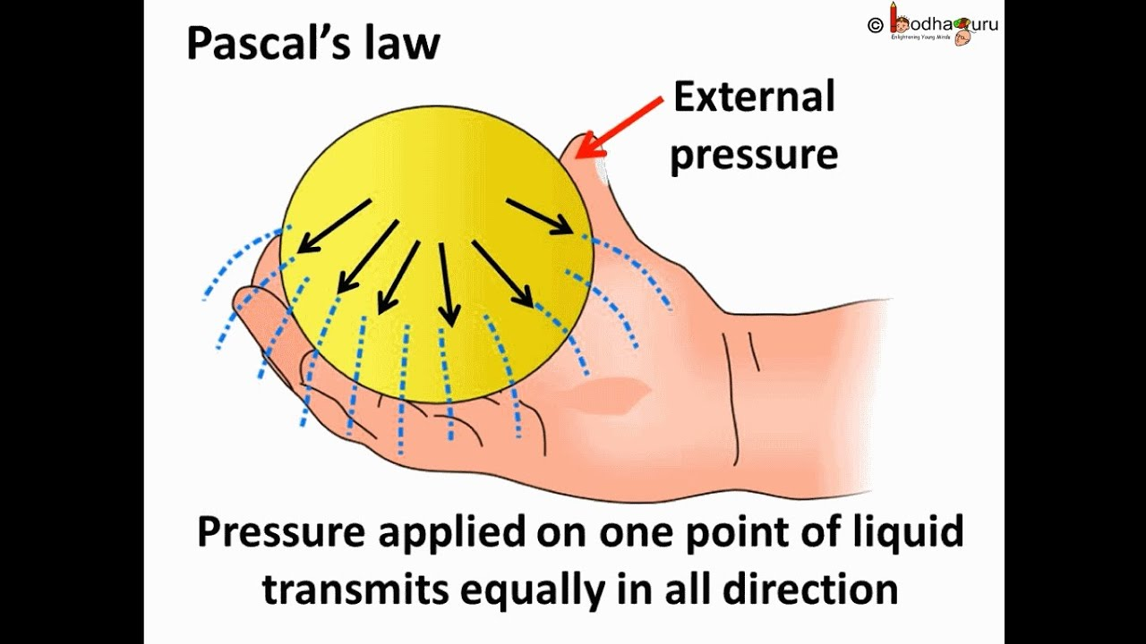 Physics - Fluid pressure and Pascal's law - English
