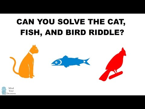 Can You Solve The Cat, Fish, And Bird Riddle?