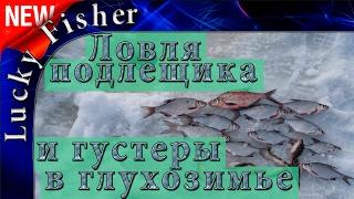 Ловля подлещика и густеры зимой в глухозимье на Волге / Bream fishing