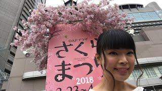 桜の宮!お花見リアル凸待ち!【彩羽真矢LIVE配信302回目】