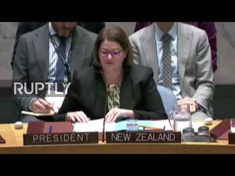 LIVE: UN Security Council meets to discuss situation in Syria