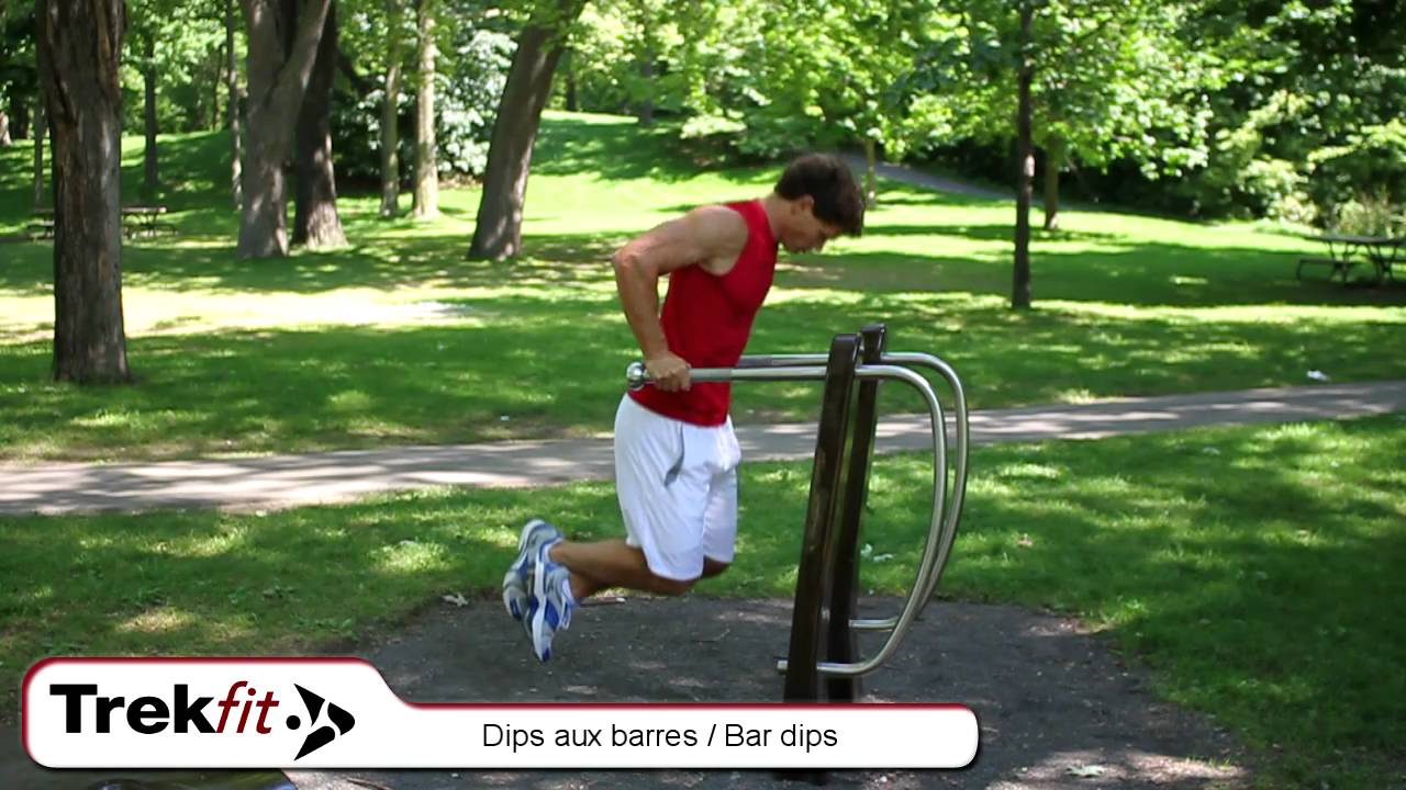 Dips aux barres alexandre par youtube - Barre traction exterieur ...