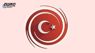 Особенности строения предложения в турецком языке