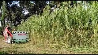 chaf cutter reaper / Chara katne wali machine